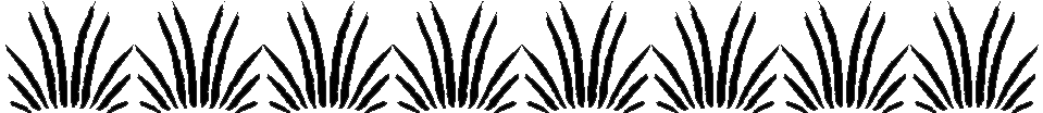 L'attribut alt de cette image est vide, son nom de fichier est ban-Pidi-Pyrn-1.png.